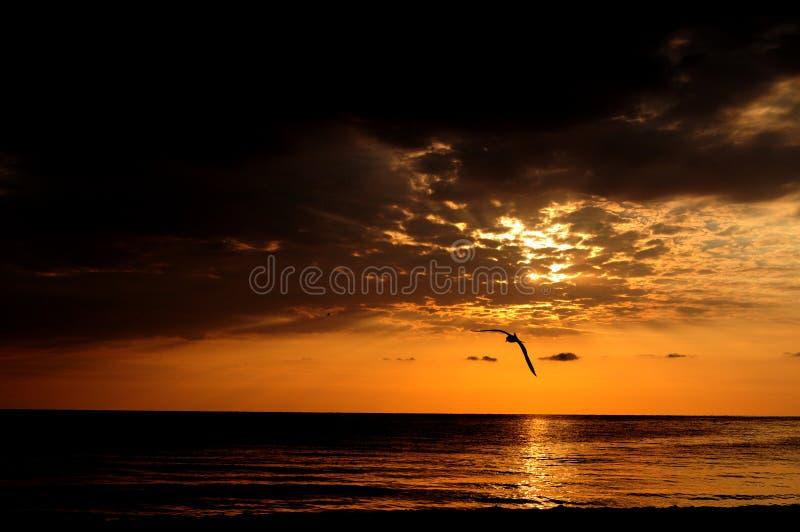 Download Dramatic sky stock photo. Image of beginning, black, dramatic - 27417148