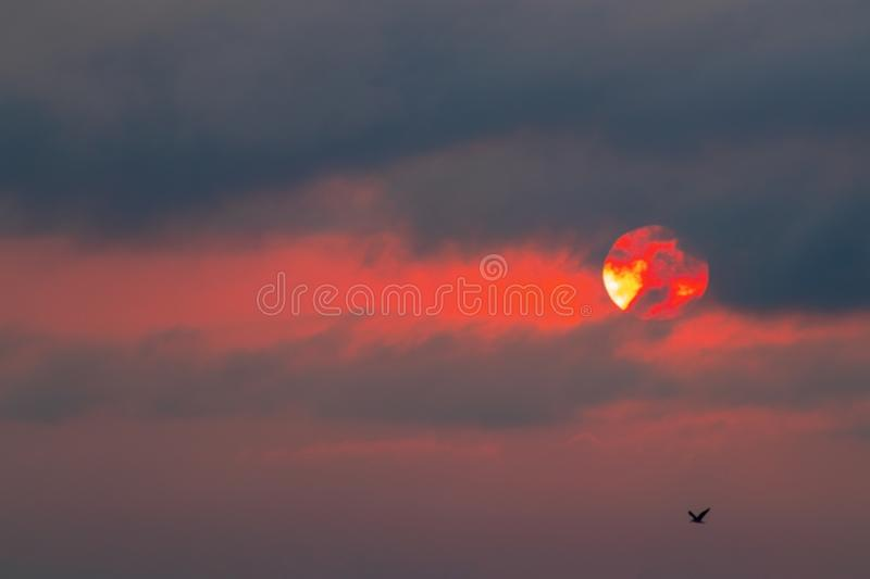 Dramatic Sky background on sunset. Nature composition. Africa royalty free stock photo