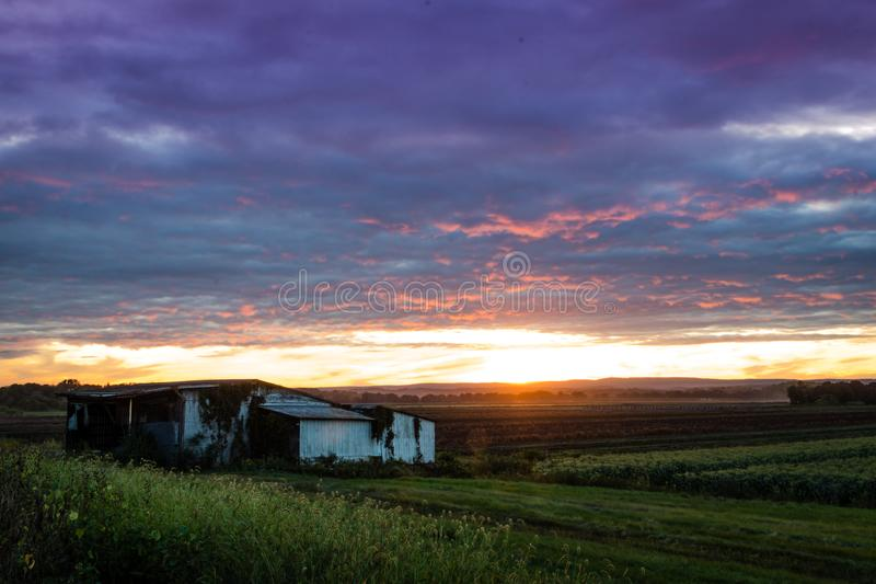 Dramatic ultra violet summer sunset over farm and white shanty royalty free stock photos