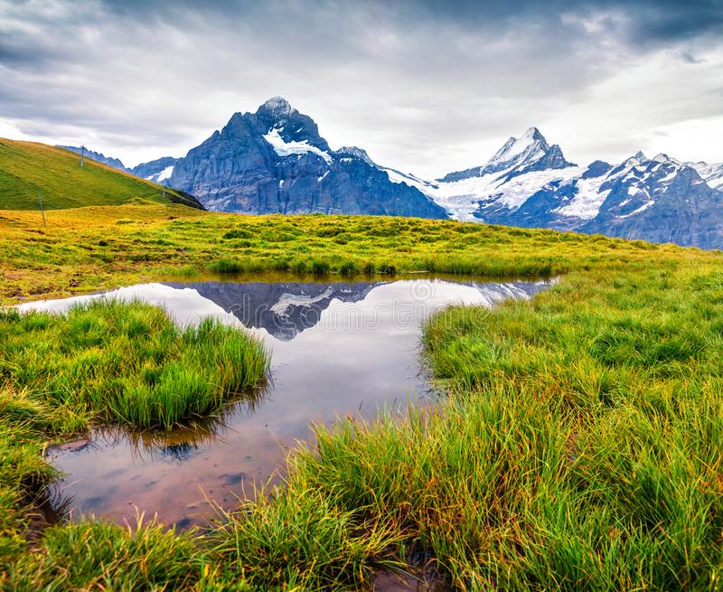 Dramatic summer view with a Mt. Schreckhorn and Wetterhorn on the background. royalty free stock photos