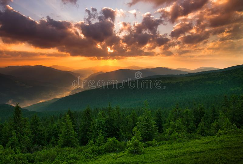 Dramatic sunset over mountains and green pine forest. Dramatic sunset over the mountains and green pine forest stock photos