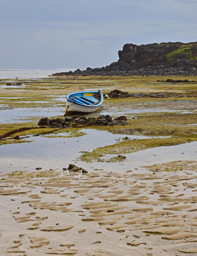 Dramatic Texture of Beach during Low Tide resembling random vein pattern with wooden boats and house in the background royalty free stock photos