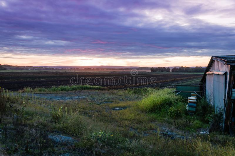 Dramatic ultra violet summer sunset over farm and shanty stock photo