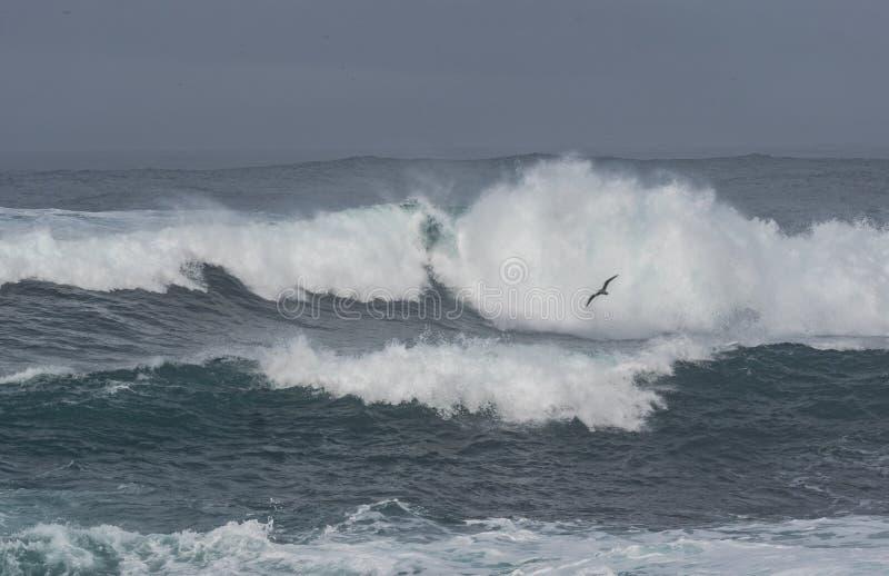 Dramatic waves stock photos