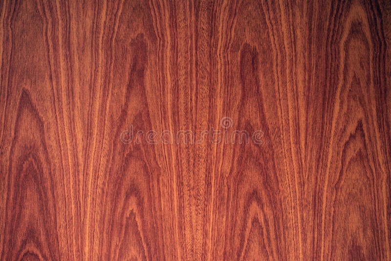 Dramatic woodgrain stock image