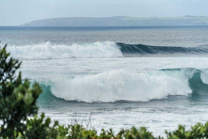 dramatisch schot van golvende oceaan met bergen in de afstand en groene takken op voorgrond, het strand van Leigh, stock foto's