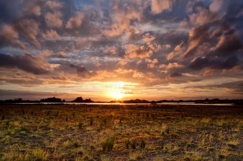 Dramatische cloudscape bij zonsondergang over weide stock afbeelding