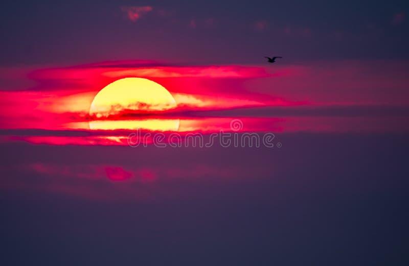 Dramatische die zonsondergang over Anglesey in Wales van Caernarfon - het Verenigd Koninkrijk wordt gezien stock foto