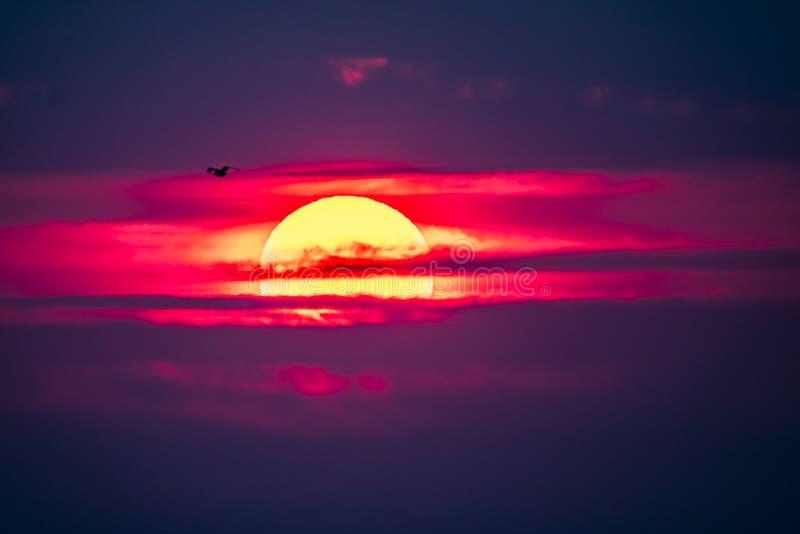 Dramatische die zonsondergang over Anglesey in Wales van Caernarfon - het Verenigd Koninkrijk wordt gezien stock afbeeldingen