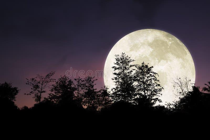 Dramatische en mooie grote maan op nachthemel stock foto's