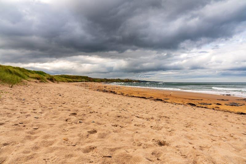 Dramatische hemel op een strand stock afbeeldingen