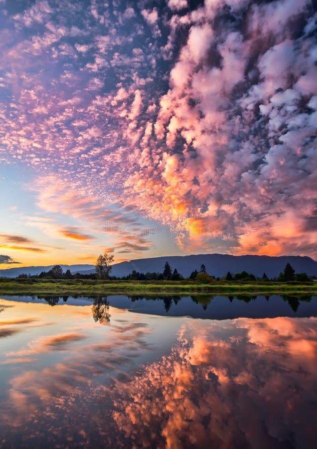 Dramatische Roze Wolkenbezinning stock foto's