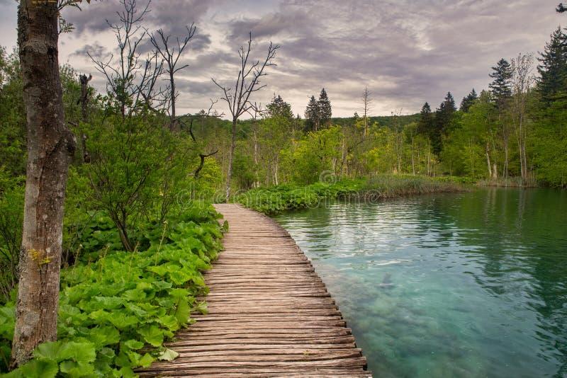 Dramatische wildnessmening in het Nationale Park van Plitvice, Kroatië stock afbeelding