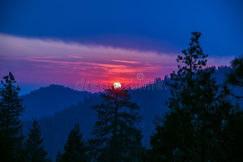 Dramatische zonsondergang bij het Sequoiabos stock afbeeldingen