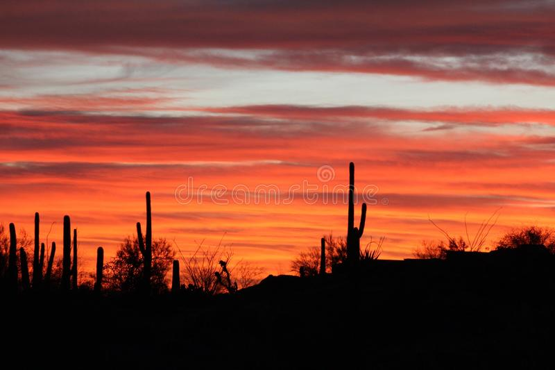 Dramatisk Arizona solnedgång royaltyfria foton