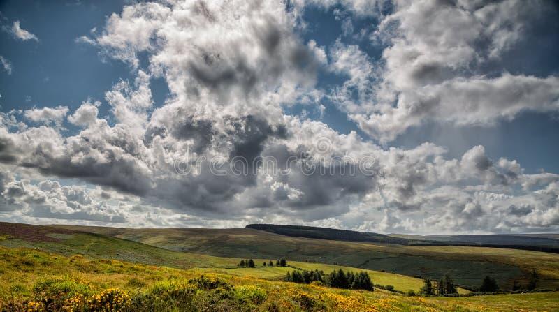 Dramatisk Dartmoor landsacpe royaltyfria bilder