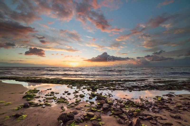 Dramatisk färgrik bedöva strandsolnedgång Puerto Rico arkivfoto