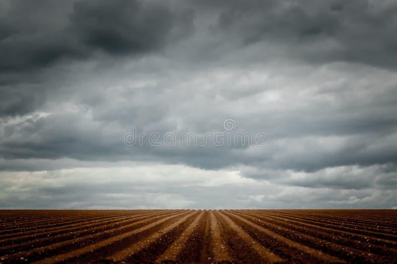 Dramatisk himmel över ett fårat fält royaltyfri foto