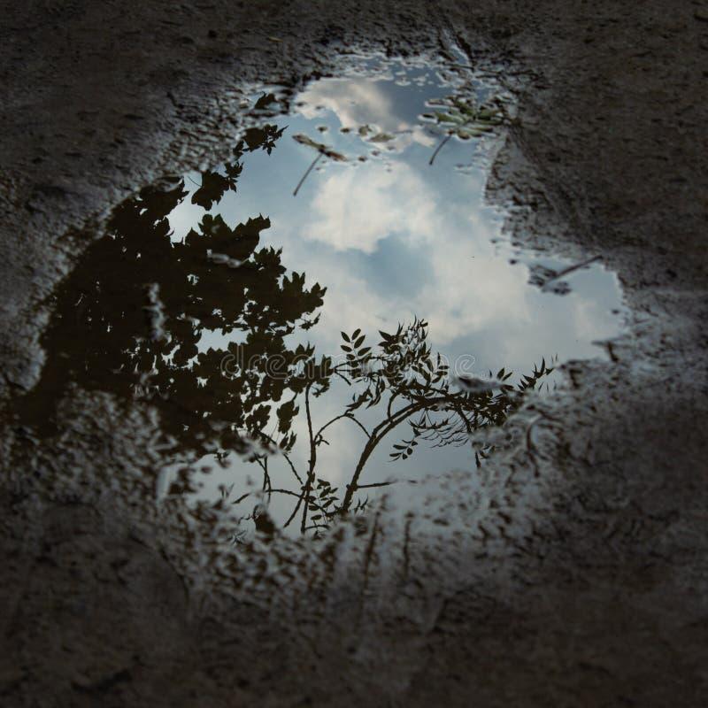 Dramatisk himmel i en pöl arkivfoto