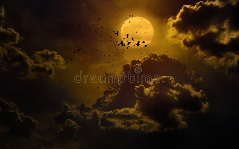 Dramatisk mystisk bakgrund med den glödande fullmånen royaltyfria bilder
