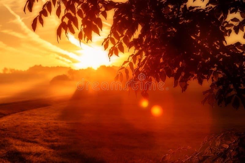 Dramatisk röd soluppgång royaltyfria foton