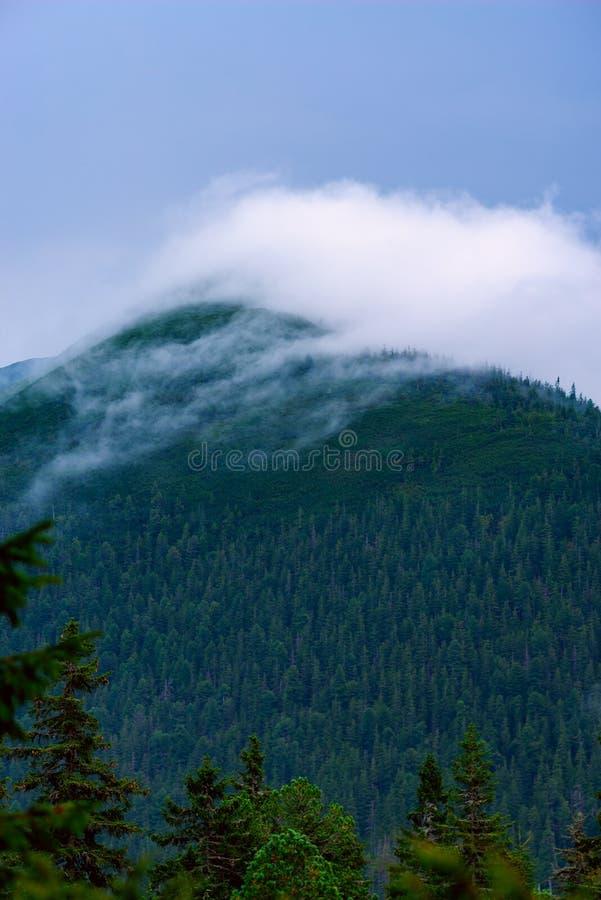 Dramatisk sikt i bergen för stormen arkivfoton