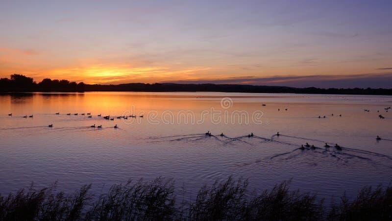 Dramatisk solnedgång på en sjö i Schleswig-Holstein, Tyskland royaltyfria bilder