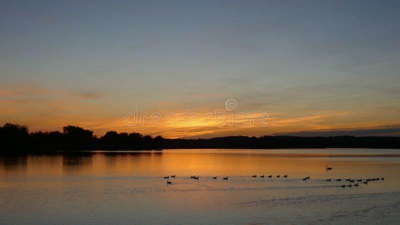 Dramatisk solnedgång på en sjö i Schleswig-Holstein, Tyskland arkivbilder