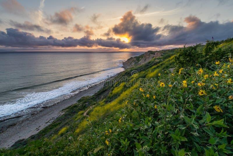 Dramatisk solnedgång på havslingareserven arkivbilder