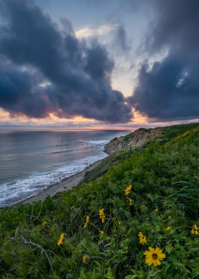 Dramatisk solnedgång på havslingareserven royaltyfri fotografi