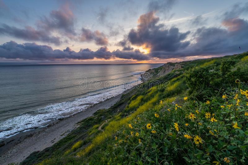 Dramatisk solnedgång på havslingareserven royaltyfria bilder