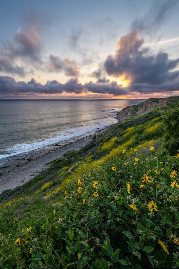 Dramatisk solnedgång på havslingareserven arkivfoto