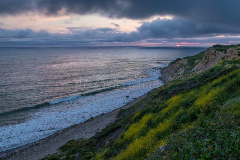 Dramatisk solnedgång på havslingareserven royaltyfria foton