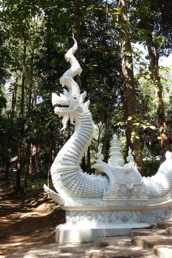 Dramatisk stor drake med det stora hornet royaltyfri foto