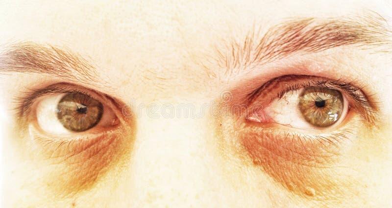Dramatiska gröna ögon fotografering för bildbyråer