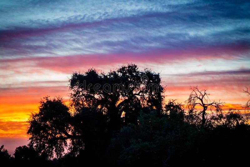 Dramatiskt vibrerande solnedgånglandskap i Rancho Oso, Kalifornien royaltyfri foto