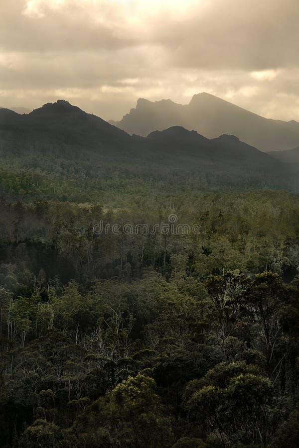dramatyczna krajobrazowa góra zdjęcie royalty free