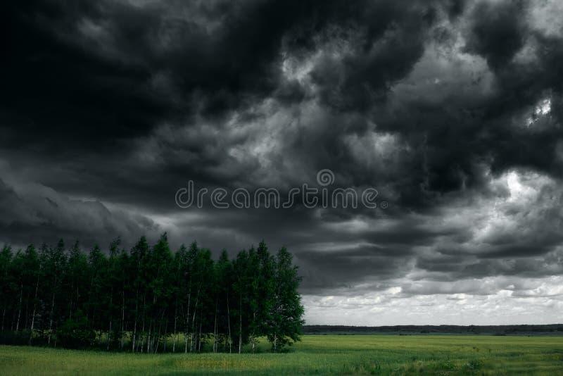 Dramatyczne grzmot burzy chmury przy ciemnym niebem cloud jabłko kwiaty obszar łąkowego kształtuje charakter słońca drzewa zdjęcie stock