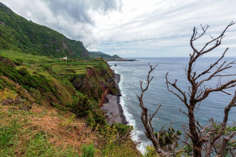 Dramatyczni Azores Drzewni obrazy royalty free