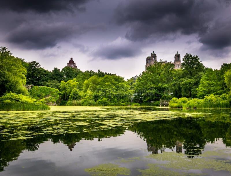 Dramatyczni nieba nad central park obraz stock