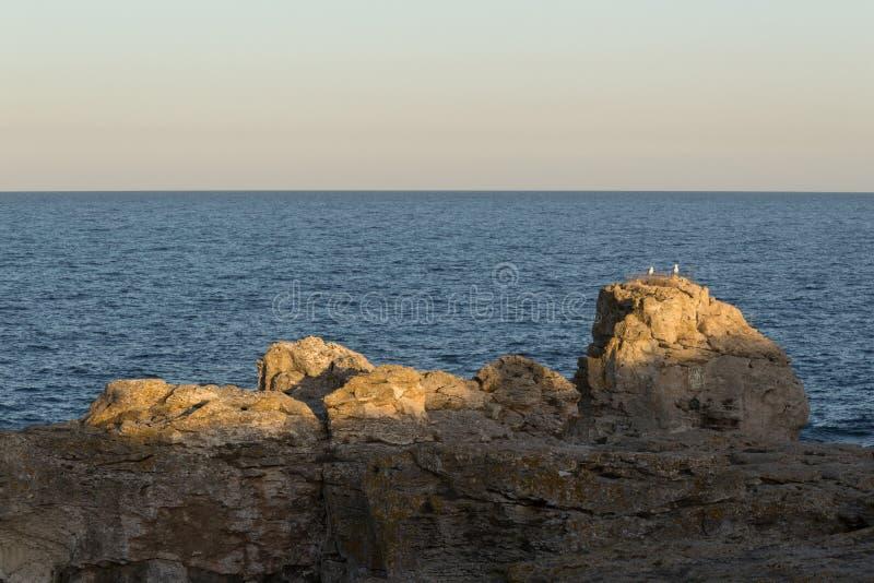 Dramatyczny krajobraz skała przy Czarnym dennym wybrzeżem z dwa seagulls stoi na nim zdjęcie stock