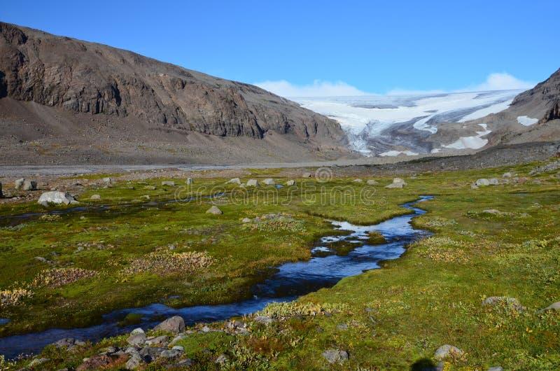 Drangajokull glaciär, Kaldalon, Island fotografering för bildbyråer