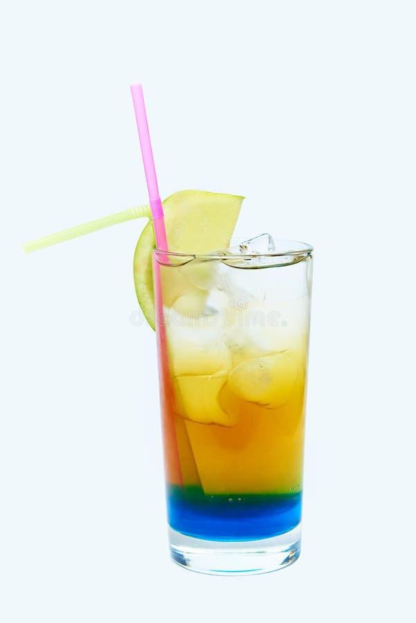 Drank met ijs en vers fruit royalty-vrije stock fotografie