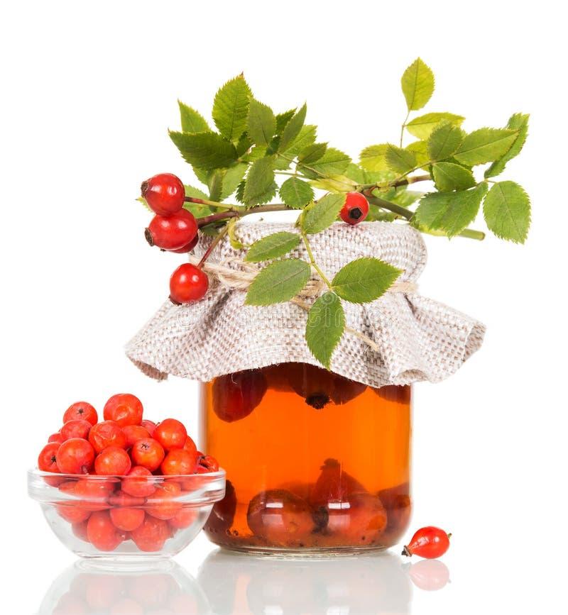 Drank van fruit van rozebottel in kruik, Lijsterbessenbessen in kom op wit wordt geïsoleerd dat stock foto