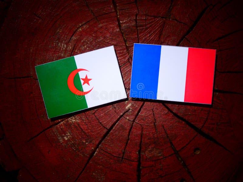 Drapeau algérien avec le drapeau français sur un tronçon d'arbre d'isolement photo libre de droits