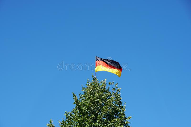 Drapeau allemand sur l'arbre images libres de droits