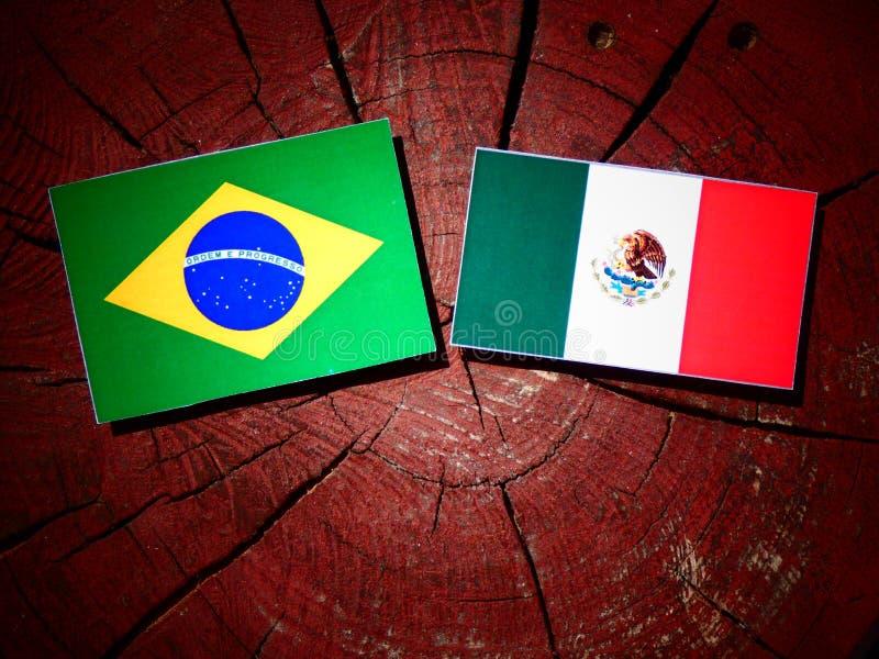 Drapeau brésilien avec le drapeau mexicain sur un tronçon d'arbre d'isolement photographie stock libre de droits