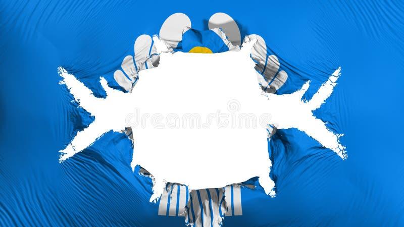 Drapeau CIS avec un grand trou illustration libre de droits