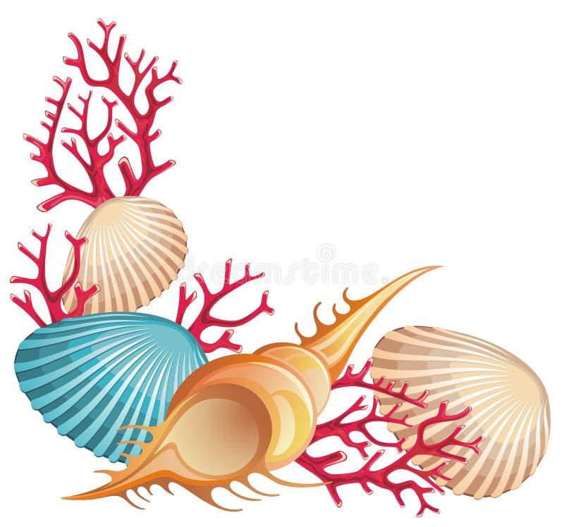 Drapeau d'été avec des seashells illustration libre de droits