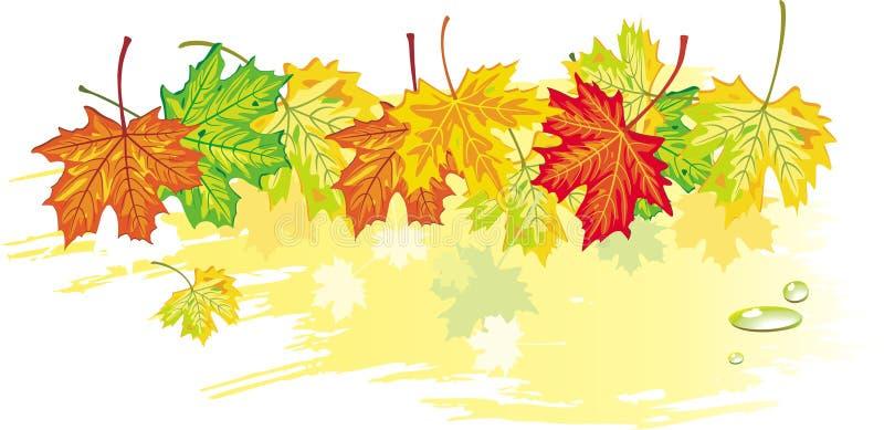 Drapeau de l'érable leaves_3 illustration libre de droits